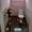 Отдых на Балхаше в Приозерске - Изображение #9, Объявление #1127637